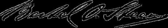 Bilderesultat for bertel o steen logo